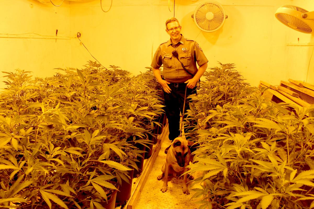 McKelvey and dog in grow house