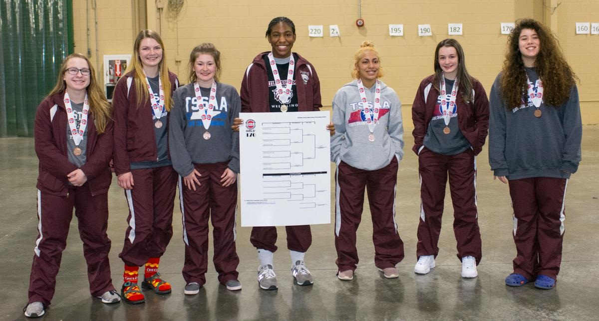 Seven Lady Wildcats bring home state medals