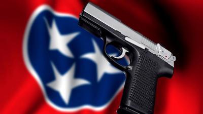 new gun law pic.jpg
