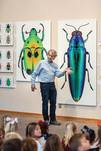 Bob Sober creates beautiful, high-def photos of bugs