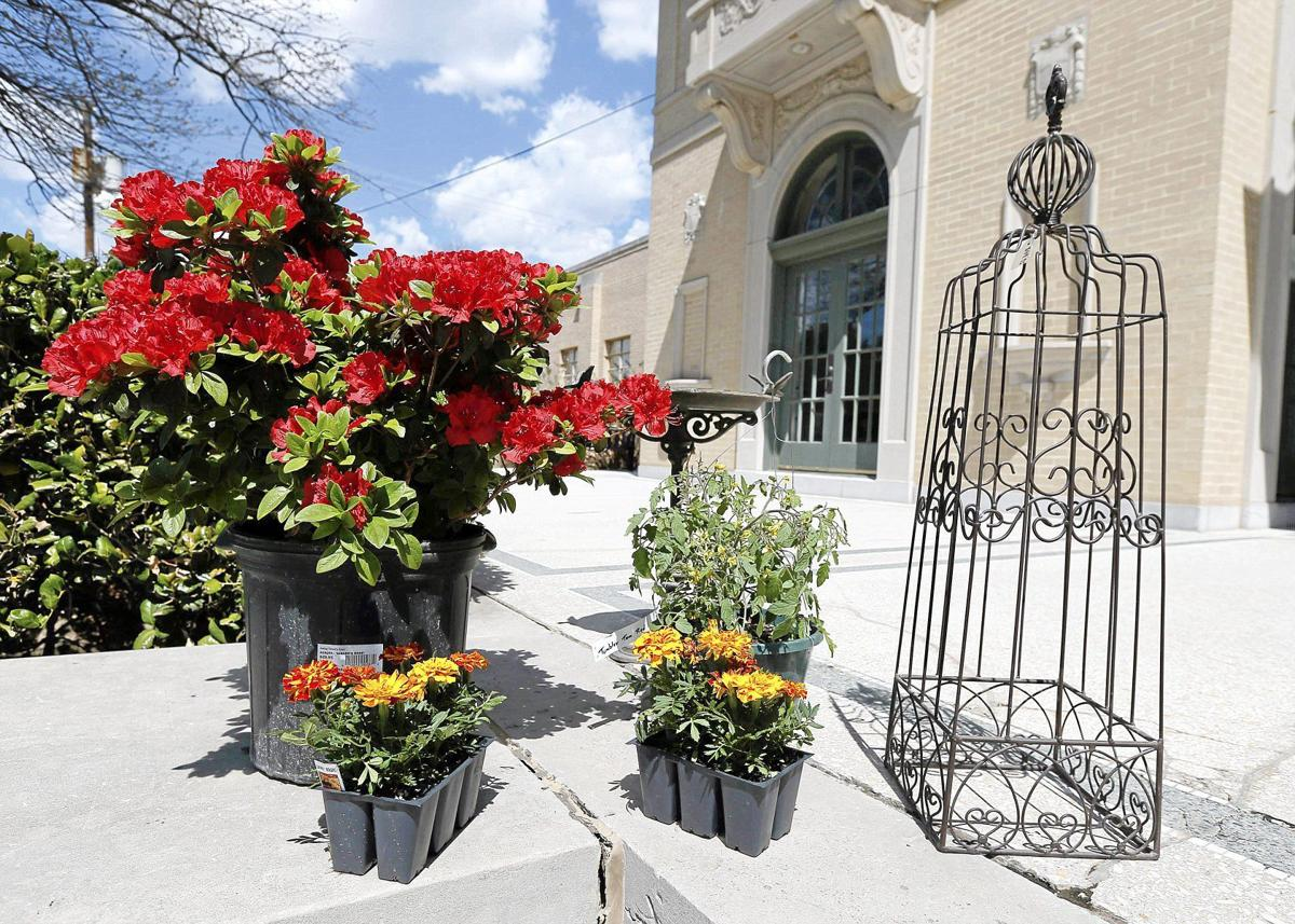 Drink Wine Smell The Roses At The Tulsa Garden Center Weekend