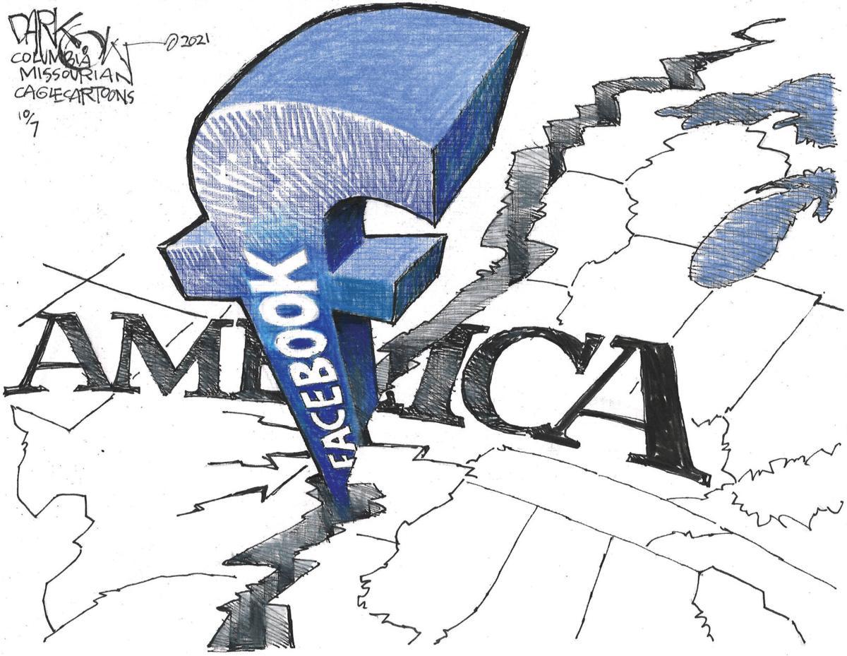 Cartoon Dividing America