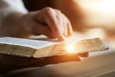bible (copy)