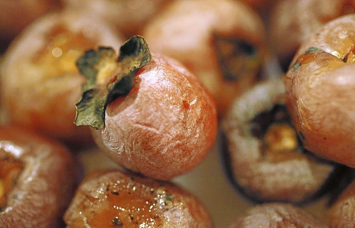 the world around you persimmon seed 2015 16 winter weather