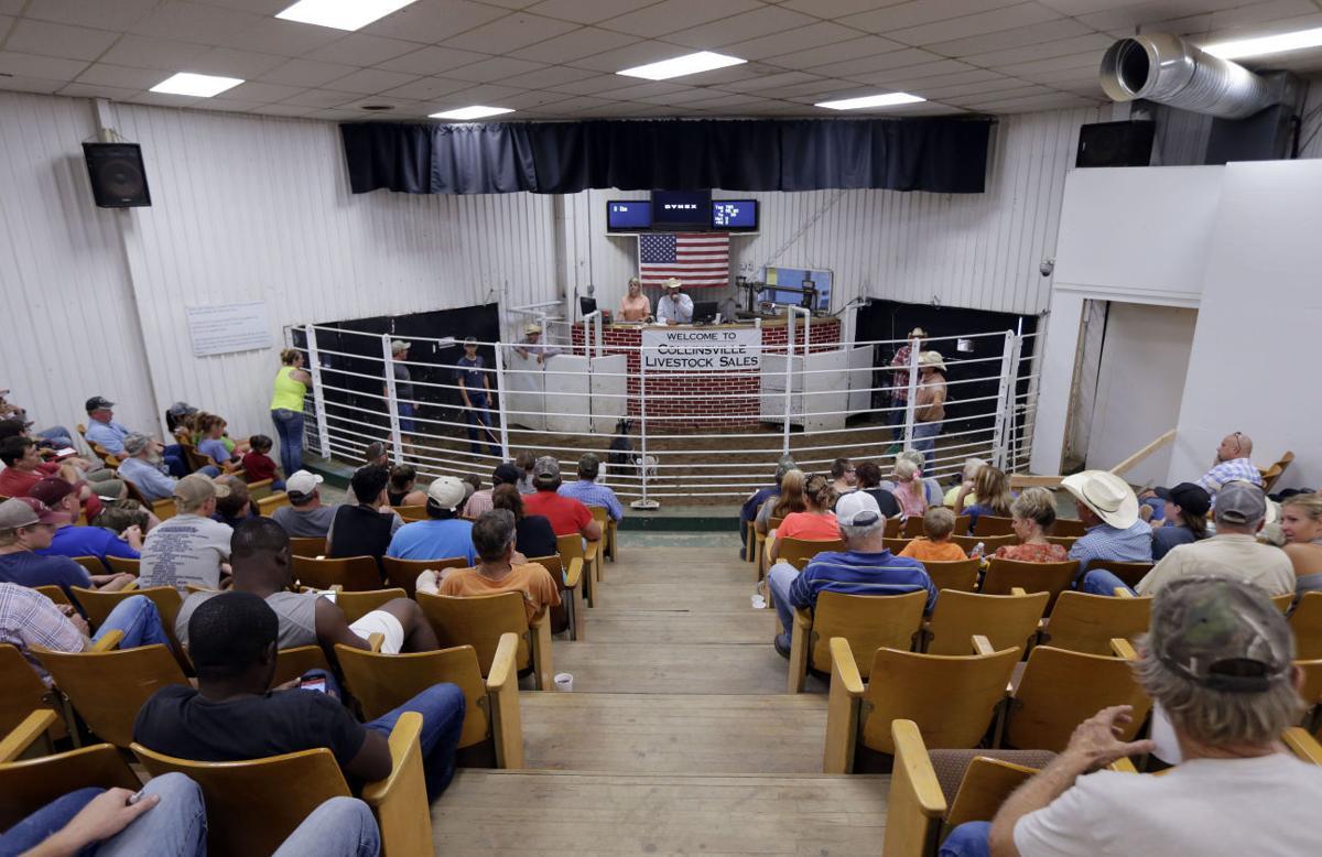 Live from livestock barn: Leroy Van Dyke to christen