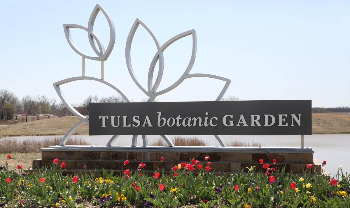 buy now tulips are in bloom at tulsa botanic garden - Tulsa Botanic Garden
