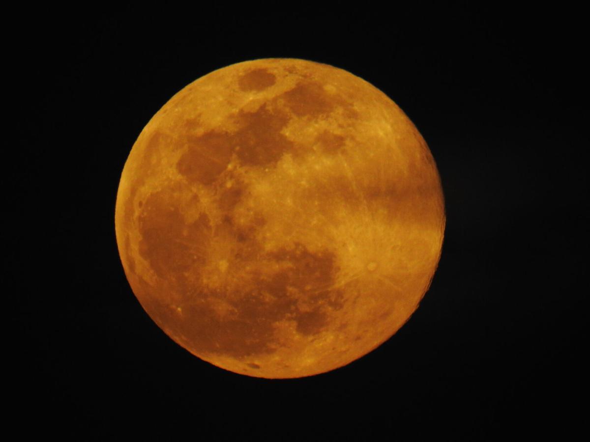 Full Pink Moon, 4-7-20.JPG
