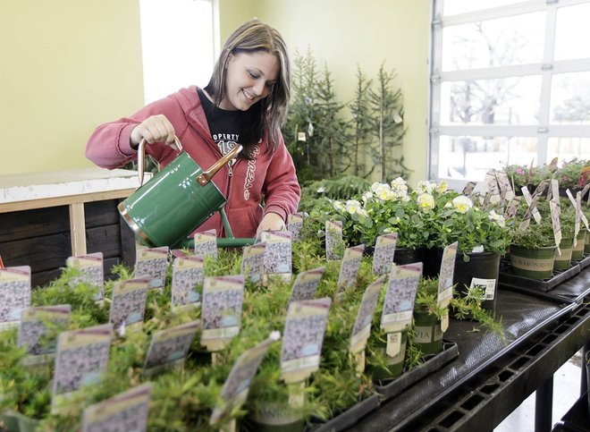 New nursery will take natural approach