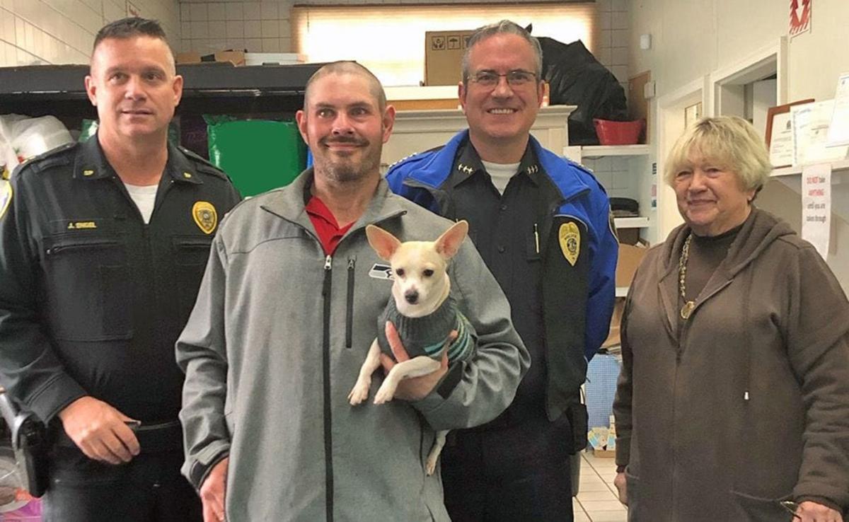 Foodbank That Gives Dog Food To Homeless Pets