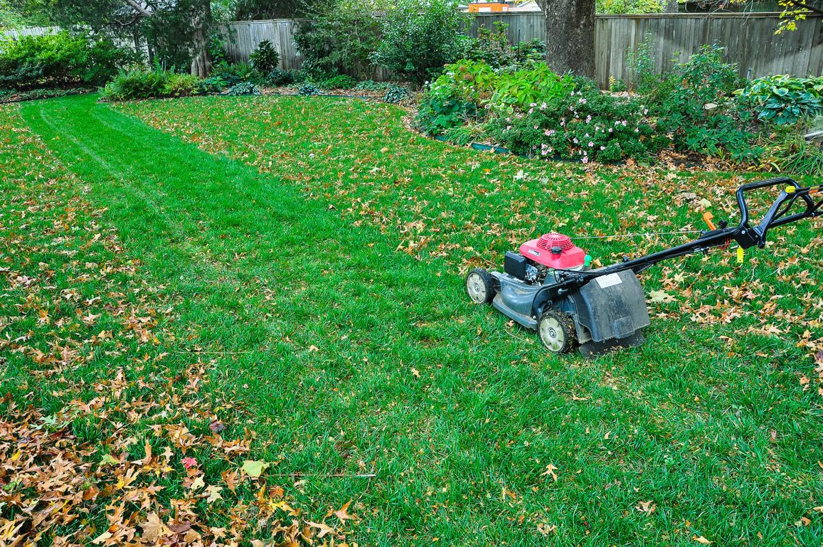 California Based Yard Care Mobile App Lawn Love Launches In Owasso News Tulsaworld Com