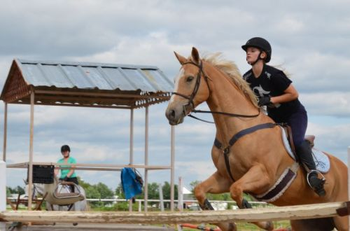 Glenpool Resident Doesn T Horse Around At Equestrian Center Tulsaworld Com