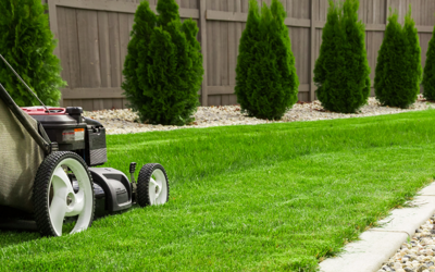 Is The Grass Greener On The Other Side? Then You Need These 6 Lawn Items Today!