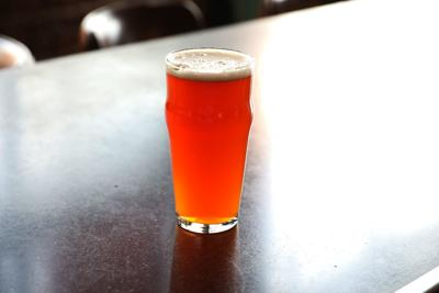 What the Ale: Beer of the Week: Elgin Park's Albion Ale