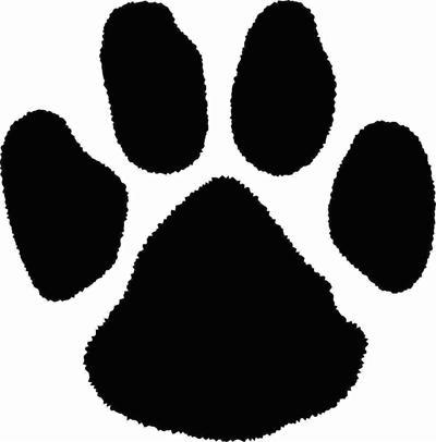 Coweta Tiger Cubs
