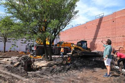 Watch Now: What the Ale: McNellie's plants huge shade trees for upcoming beer garden