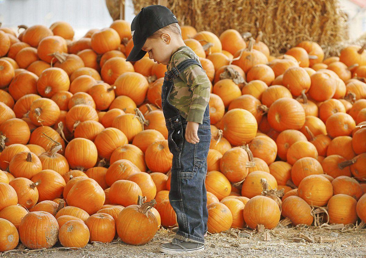 Tulsa's best fun and family-friendly Halloween events   Weekend ...