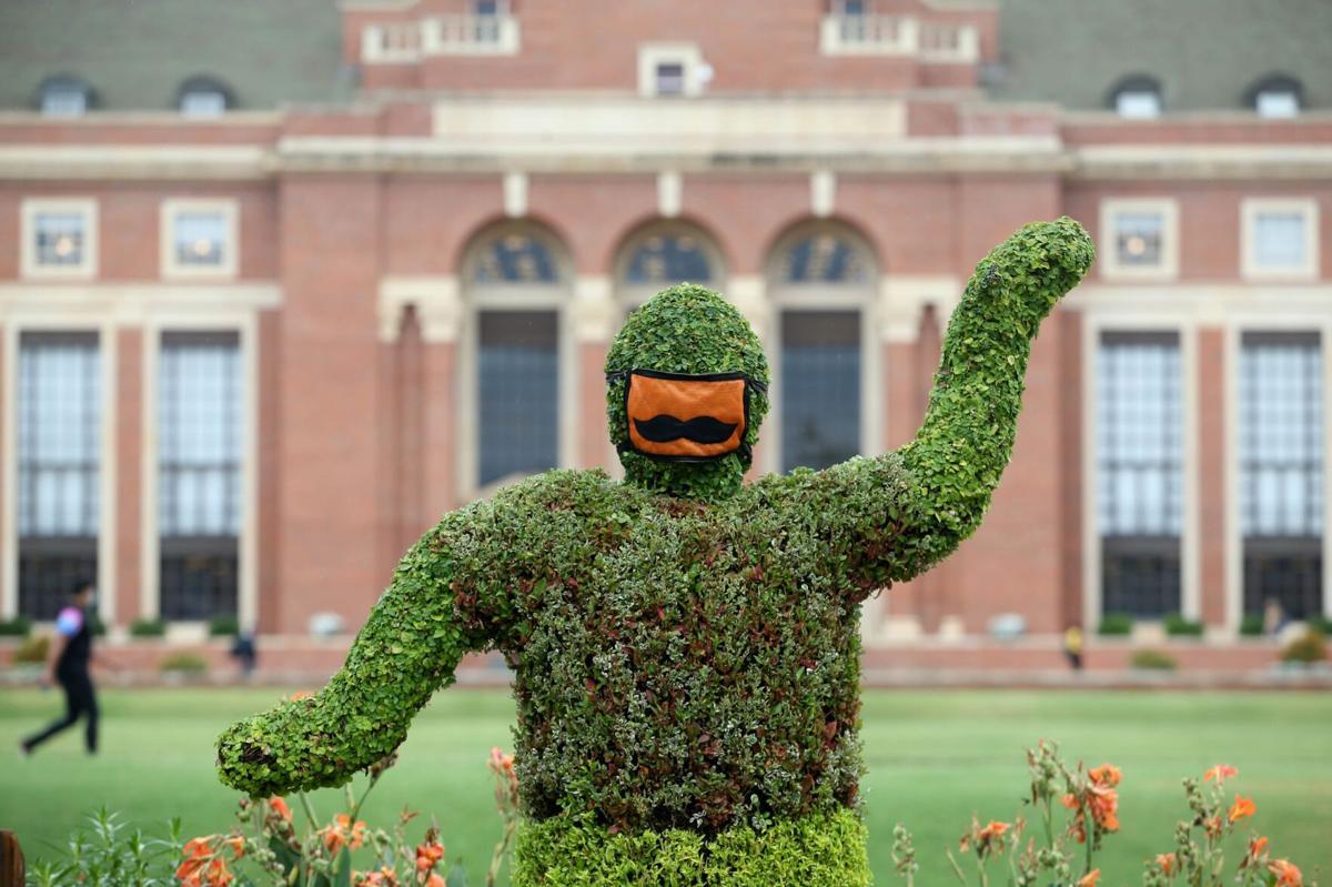OSU campus - shrub with mask