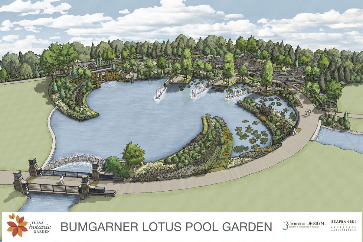 Bumgarner Lotus Pool Garden