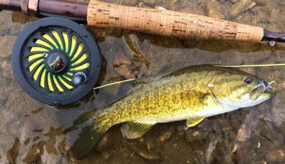 fly fishing smallmouth bass (copy)