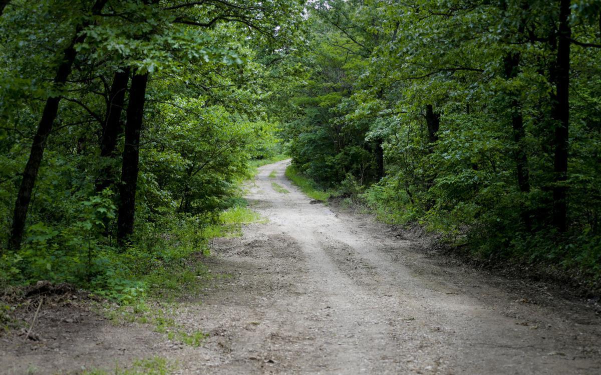 camp scott girl scout murder