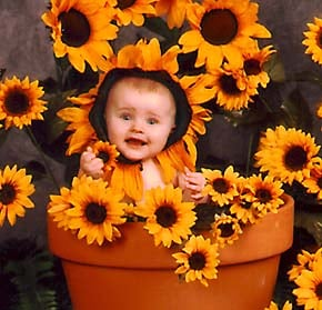 Tulsa Photographer Snaps Anne Geddes Type Images