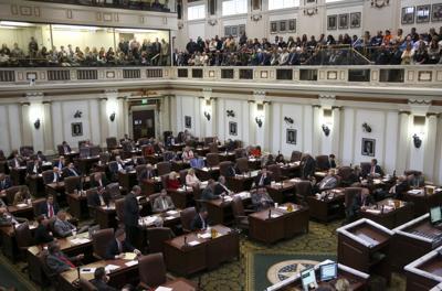 budget vote (copy)