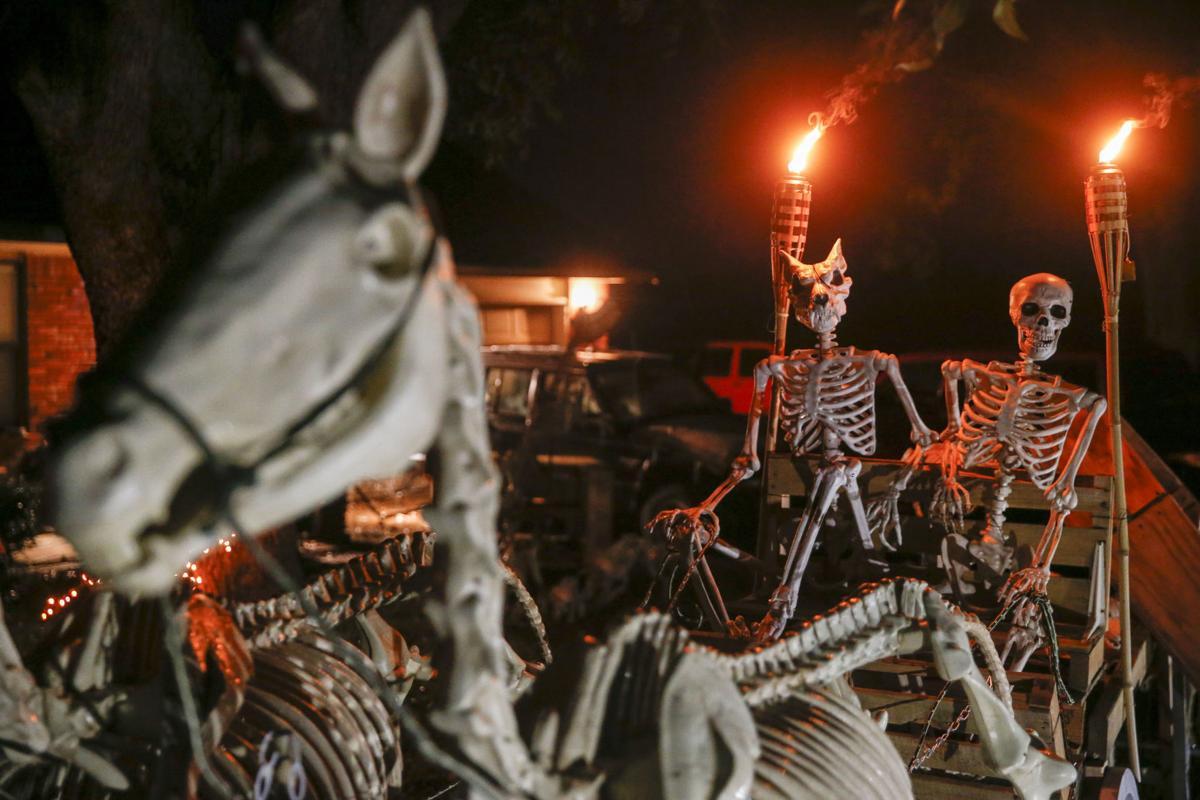 hearsepower: creator of skeletal yard display reminds that halloween
