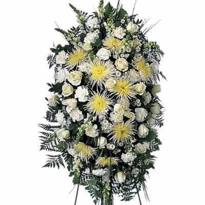 Death and Funeral Notices for Aug. 19