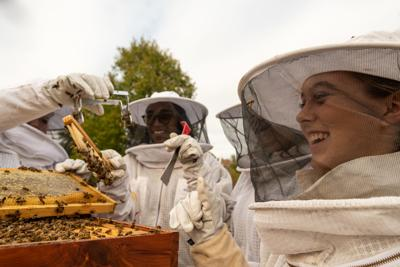 Queen Bees: Hawkins all-female FFA team comes up with solution at business for bees, turns a profit and will appear on The Today Show