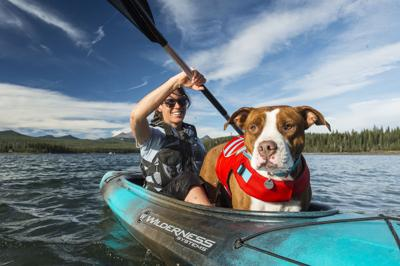 Keep Fido happy and safe during outdoor adventures.