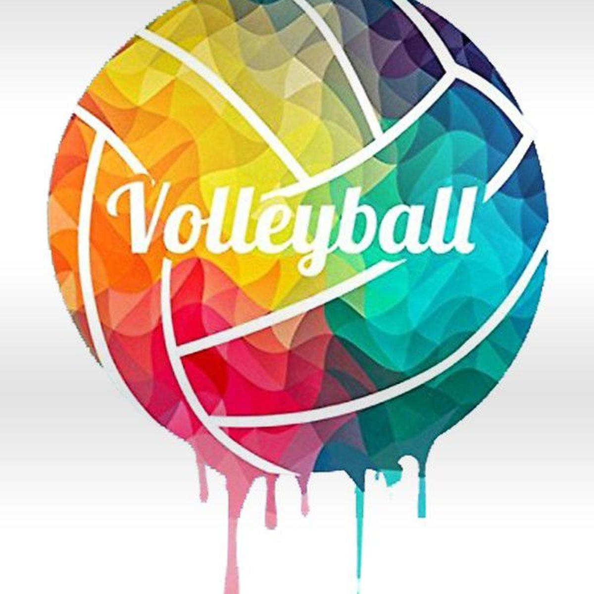 Volleyball Roundup: Whitehouse sweeps Canton | High School