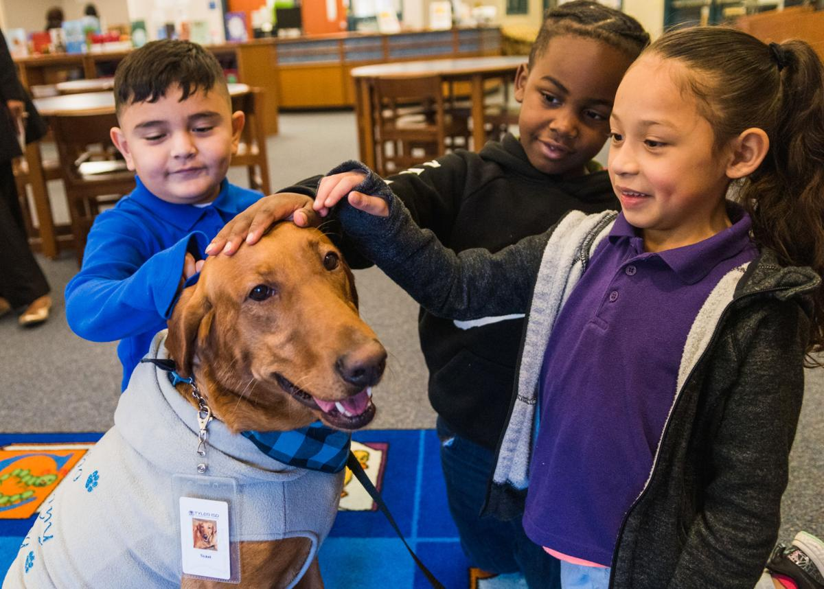 02182020_tmt_news_ticket_therapy_dog-8.jpg