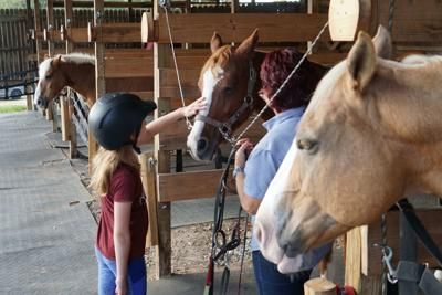 Campaign underway to build $1.3 million therapeutic equestrian center in Tyler