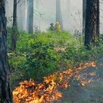 Smoke In North Tyler Caused By Controlled Burn