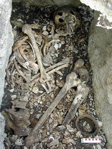 Old bones under a pub reveal Irish may not be Celtic at all