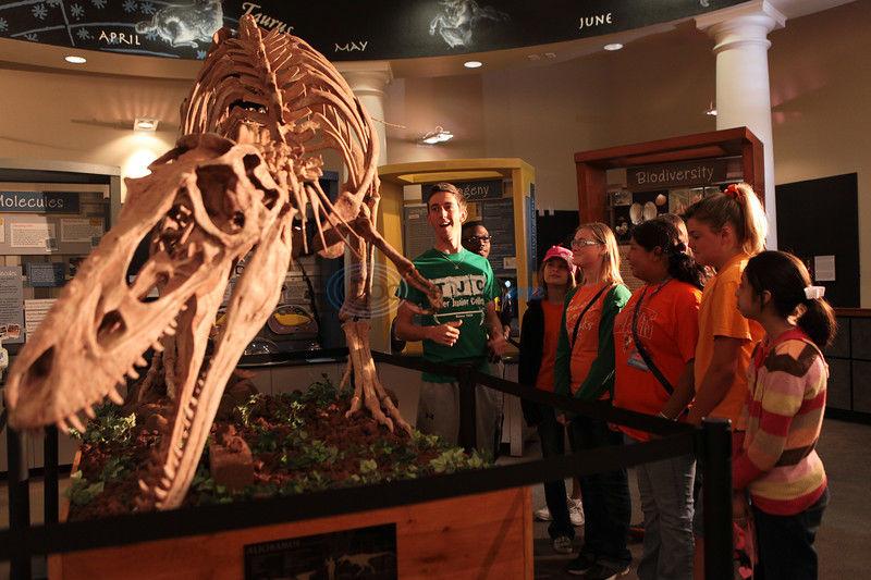 Jurassic Summer exhibit to go extinct this weekend