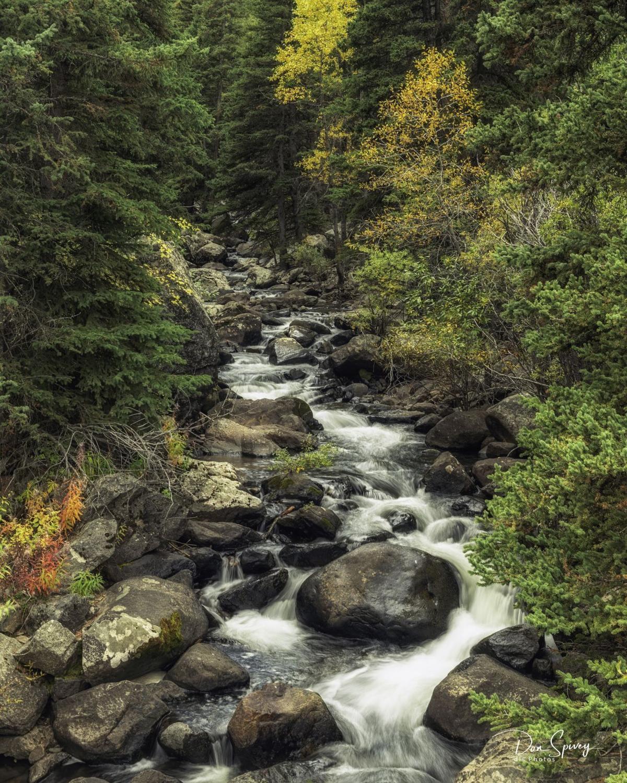 Big Horn National Forest-020-1.jpg