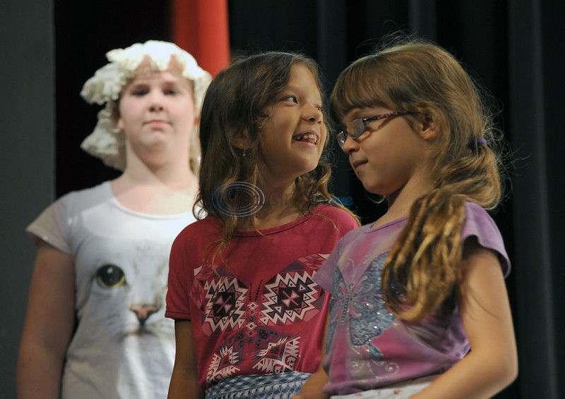 Finding their stage Voices: Summer camp explores life under the bright lights