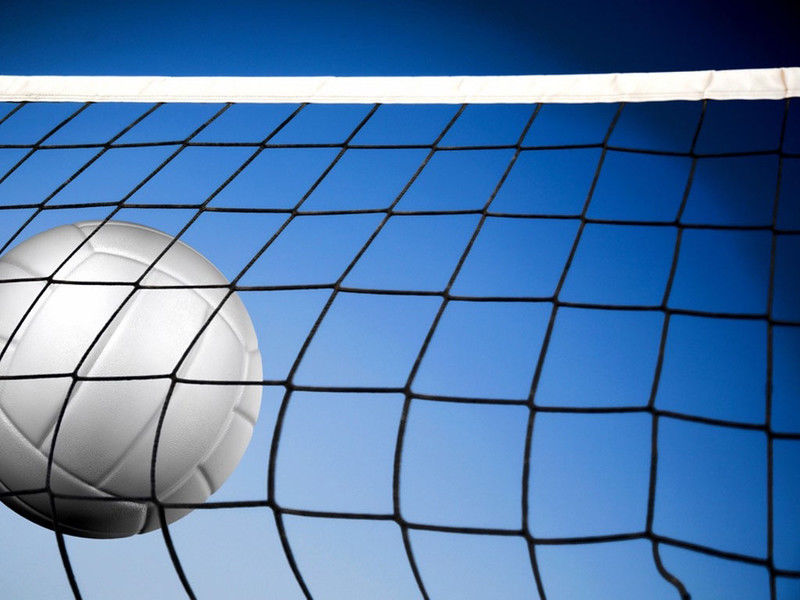 Volleyball Tuesday Roundup: Whitehouse cruises past Spring Hill
