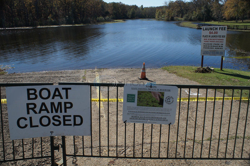 TPWD begins treatment of giant salvinia on Lake Fork