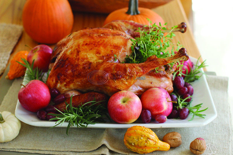 Go ahead roast a bird, we've got your back