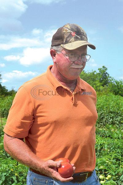 Jacksonville grower Claiborne behind time-released tomatoes