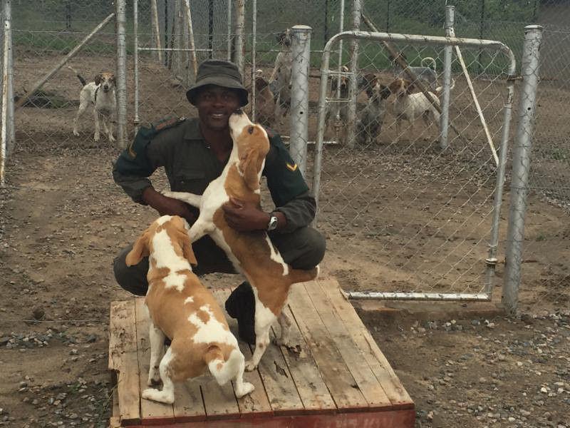 DSC underwrites anti-poaching K-9 unit