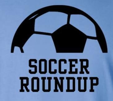 soccer roundup, blue & black