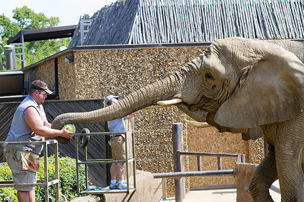 Animals, visitors treated to fun day at Caldwell Zoo