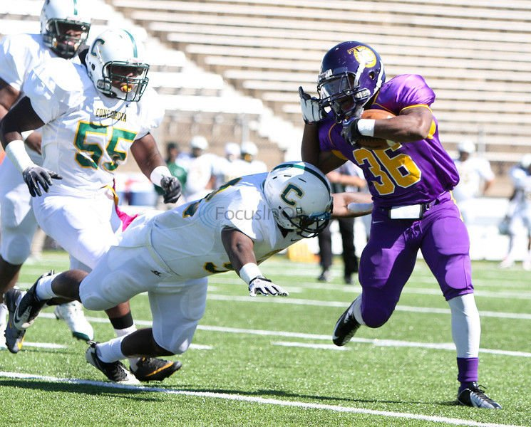 Home Cooking: Steers win homecoming game