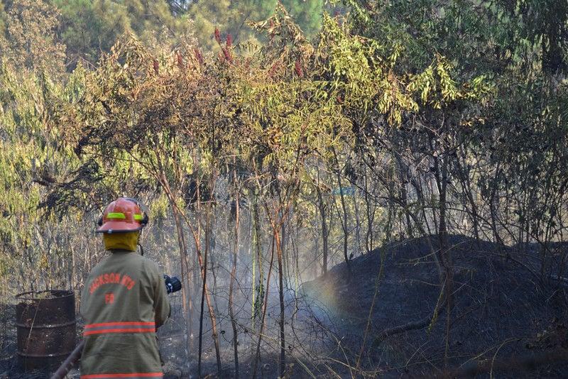 VIDEOS: 350 acres burn near Jackson Heights