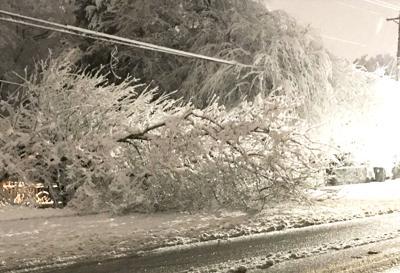 snow damage.jpg