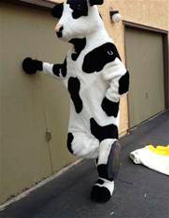 Calif. man busted for selling rustled cow costumes