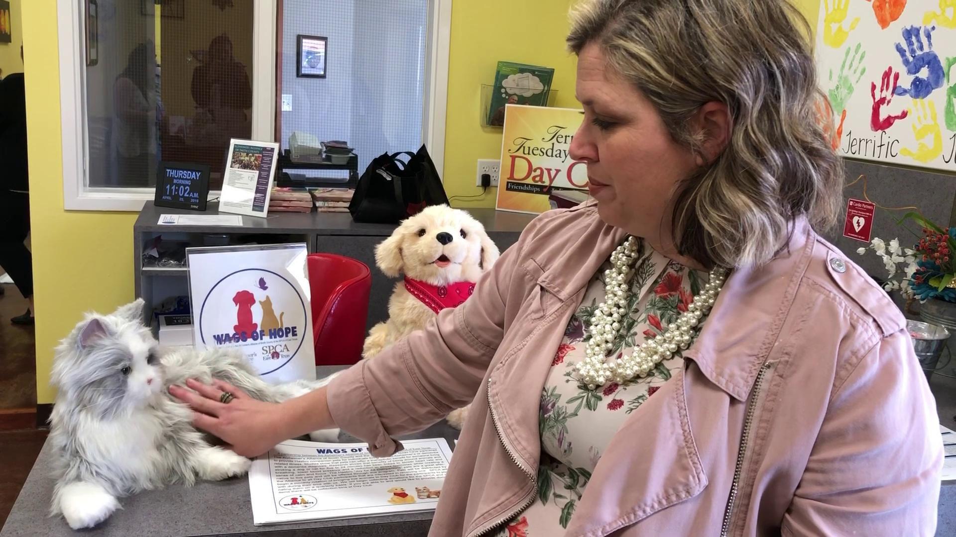 Stephanie Taylor Alzheimer's Alliance Executive Director talks about Hasbro  companion pets